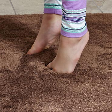 STAINMASTER® Area Rugs | Fort Wayne, IN